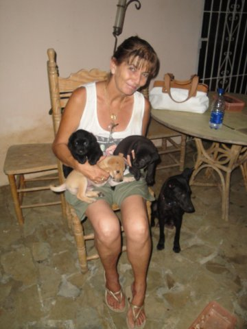 3 PUPPIES AND MOTHER FOUND IN ABANDONED HOUSE 24.06.10